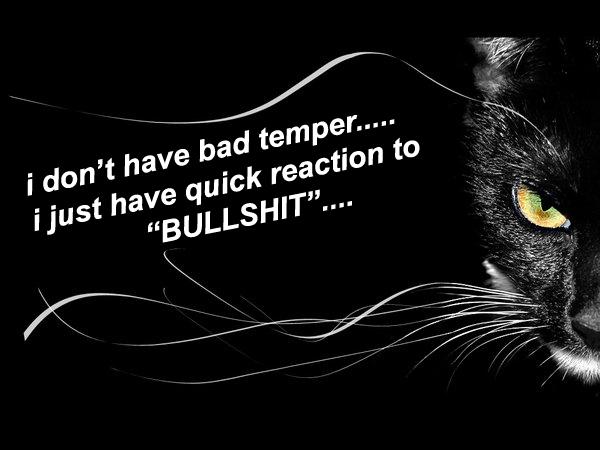 i, don't, have, bad, temper